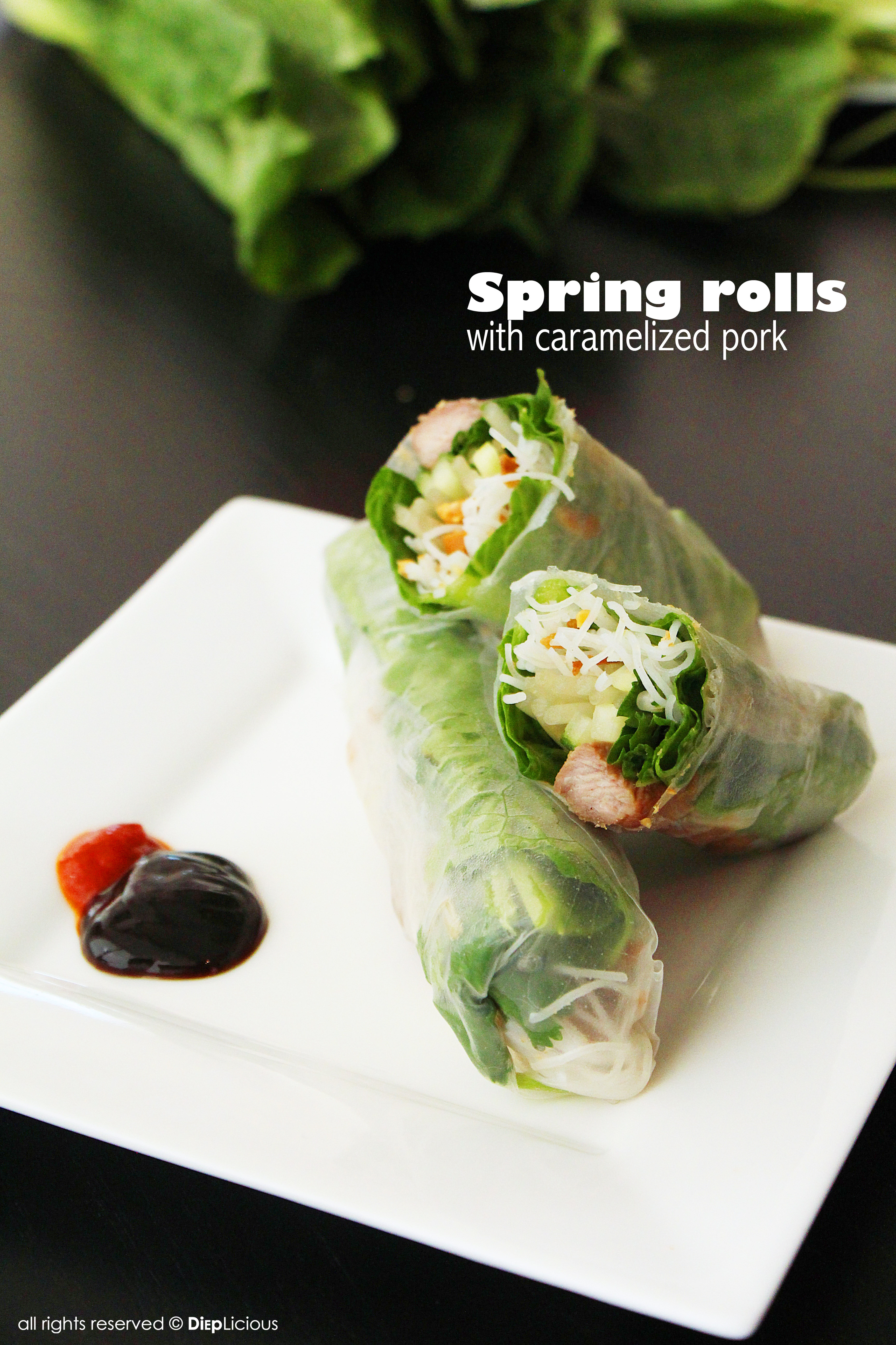 Diepliciousspring Rolls With Caramelized Pork Dieplicious
